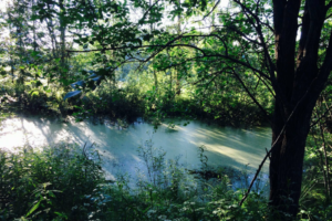 ORIMATTILA Mallusjoki tontti alk. 7000 m2
